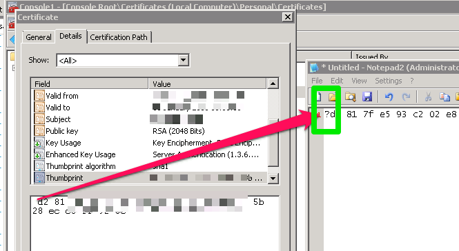 Screenshot showing invalid byte copied from Certificate snap in